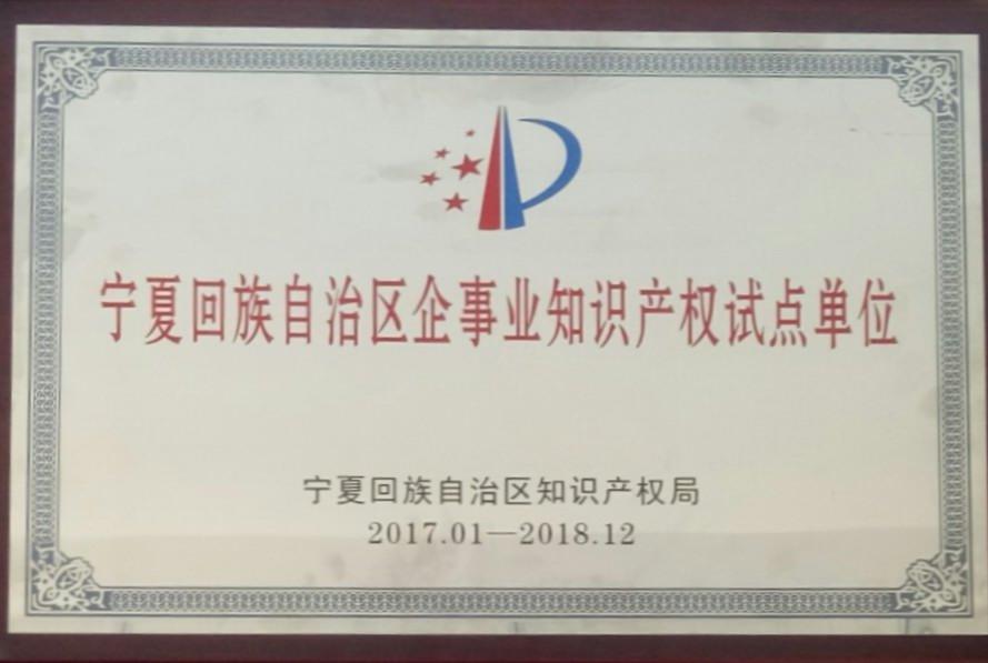 宁夏回族自治区企事业知识产权试点单位201701-201812