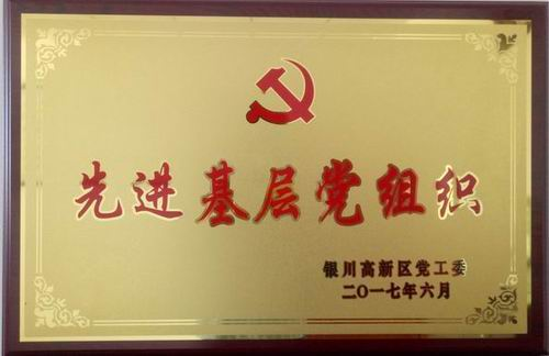 先进基层党组织2017-06