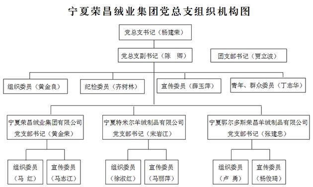 党组织机构 - 宁夏荣昌绒业集团